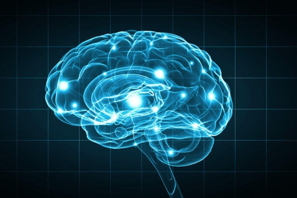 10 myths about the brain that you should not believe